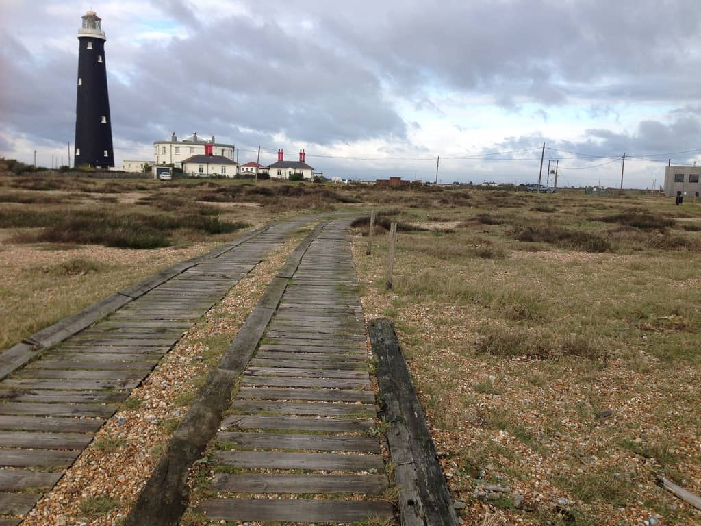 Dungeness photo