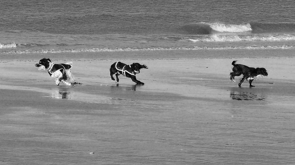 Brancaster beach photo
