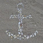 beach shell art photo