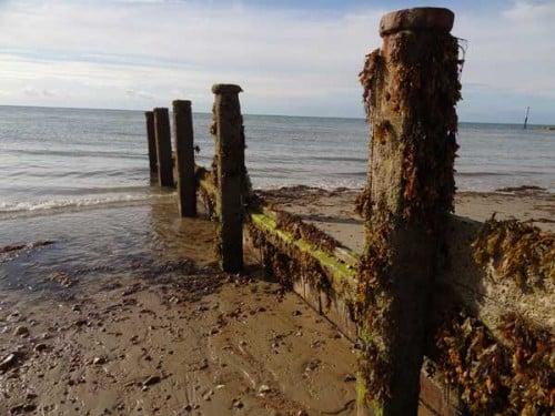 Wooden groynes on the British coastline