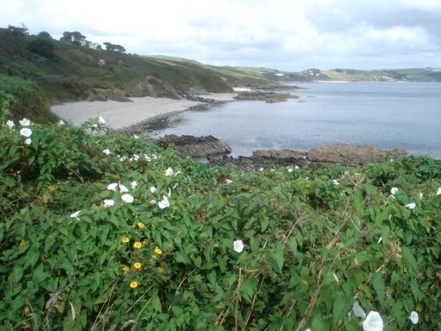 Porthbean beach, Portscatho, Cornwall