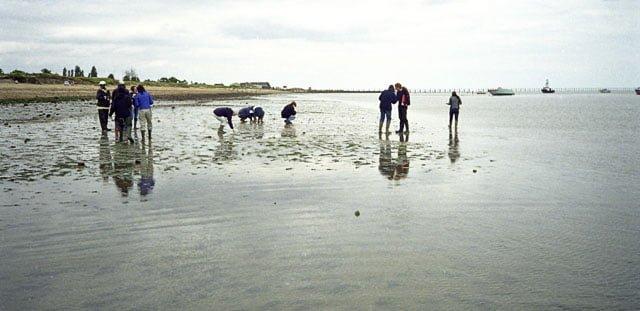 Shoebury East beach, Southend-on-Sea, Essex