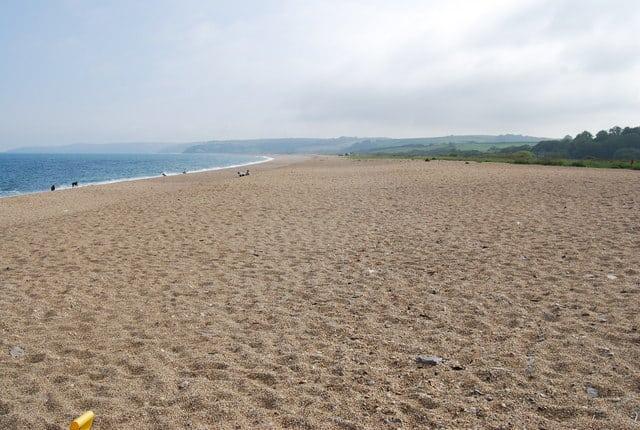 Strete Gate beach, Slapton, Devon