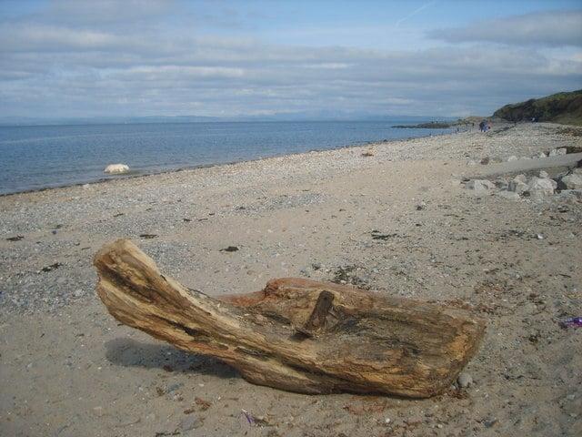 Half-Moon-Bay-beach