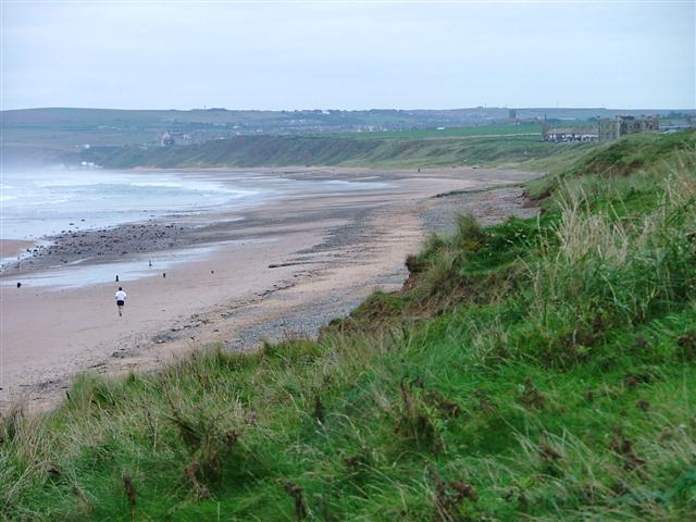 Stray-beach