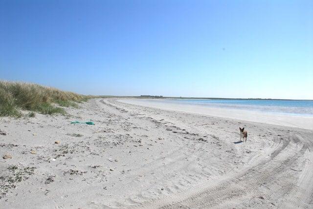 Backaskaill Bay beach, Sanday, Orkney Islands