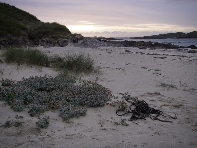 Traigh-an-t-Suidhe beach, Iona, Argyll and Bute