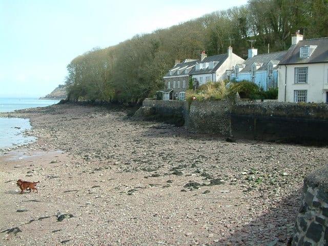 Dale-beach