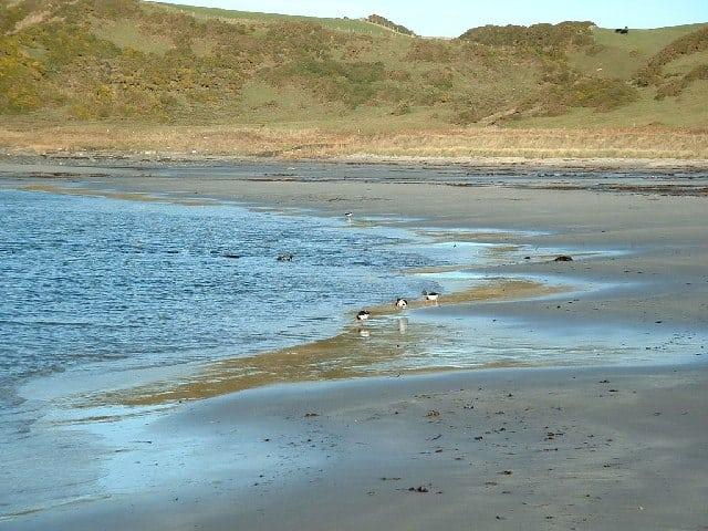 Ardwell Bay beach, Stranraer, Dumfries and Galloway