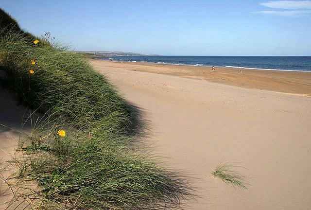 Cheswick-Sands-Cocklawburn-beach
