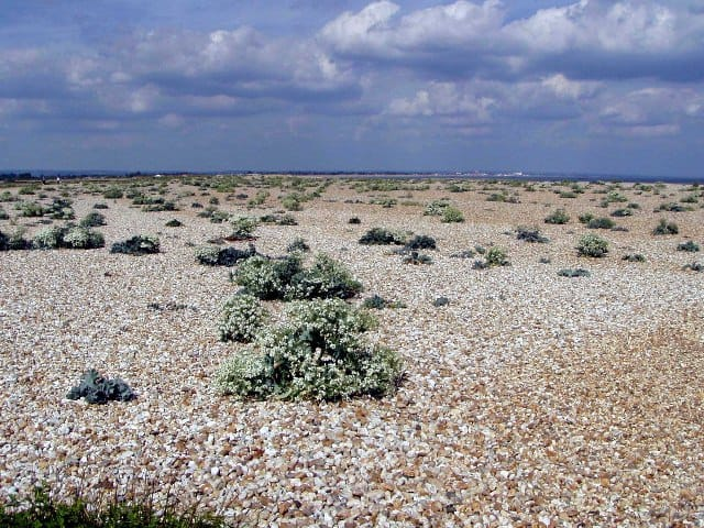 Selsey Pagham Harbour beach, Selsey, West Sussex