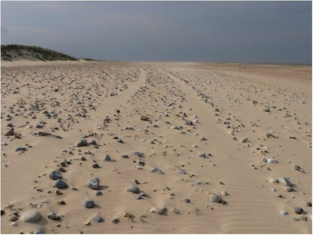 Winterton-on-Sea-beach