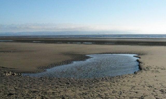 Burnham On Sea Beaches Dog Friendly