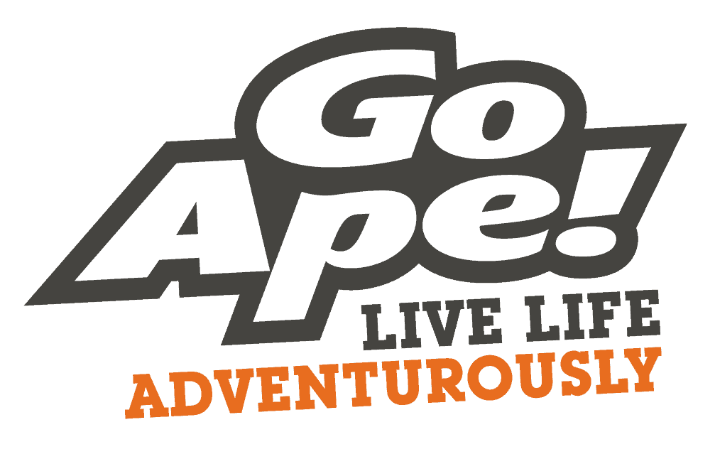Go Ape Grizedale forest adventure, Grizedale, Hawkshead, Cumbria