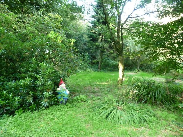 The Gnome Reserve and Wild Flower garden, Bradworthy, Devon