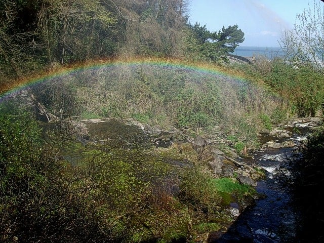 Glen Lyn Gorge, Lynmouth, Devon