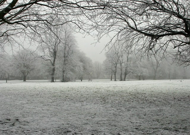 Pearson Park, Hull, East Riding of Yorkshire