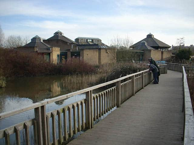 Arundel Wildfowl and Wetland Centre, Arundel, West Sussex
