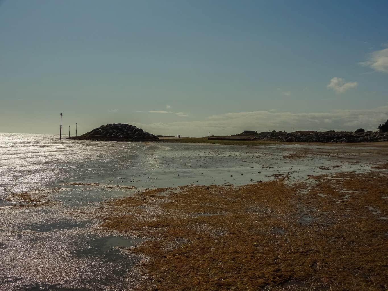 Elmer-Sands-beach-0724