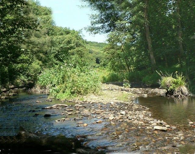 Bryngarw-Country-Park