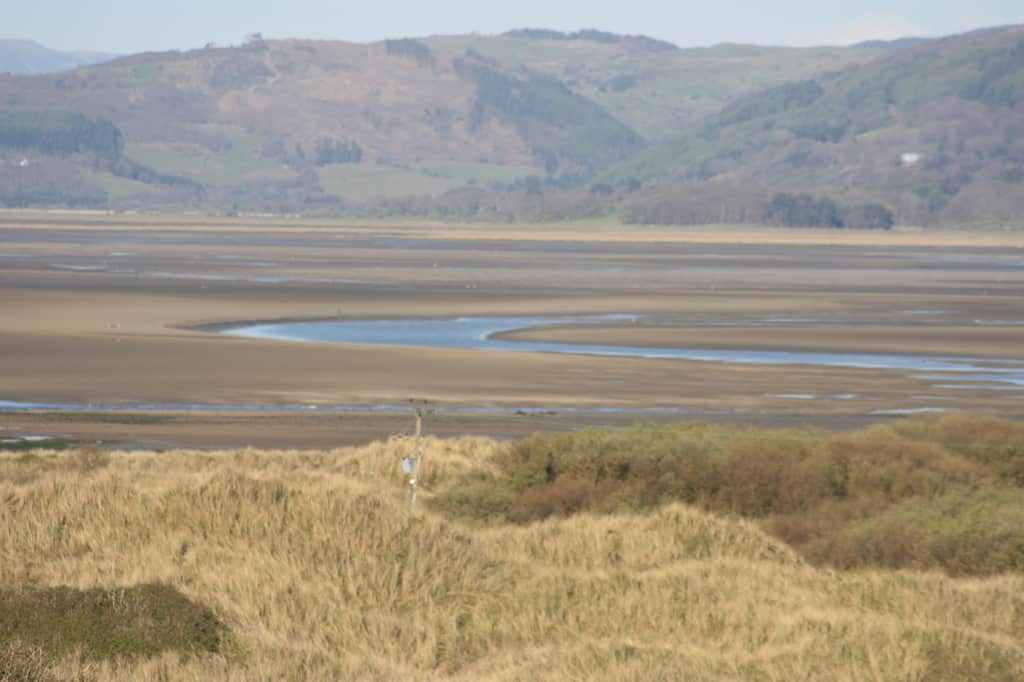 ynyslas photo