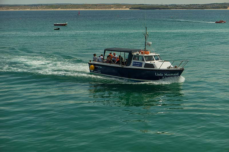 Seal Island boat trip from St Ives, Cornwall