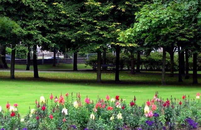Victoria-Park-Aberdeen